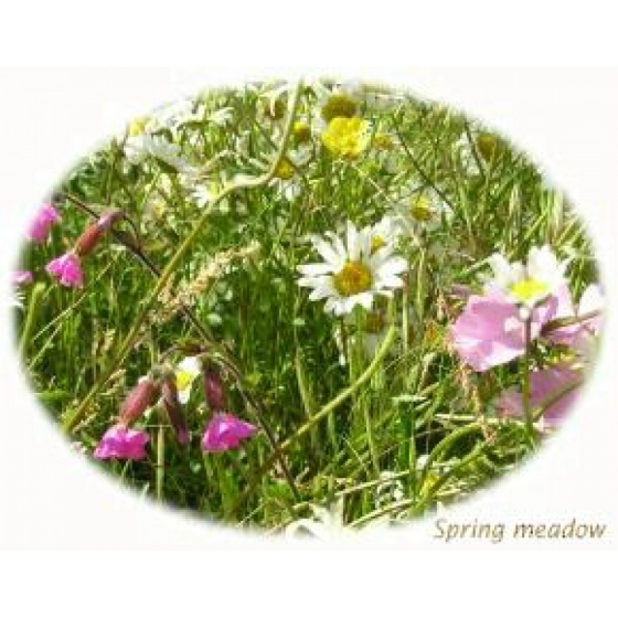 Spring Meadow Selection